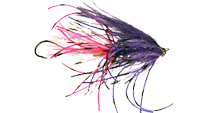 Silvey's Extractor Fly