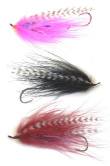 Burnt Chicken Steelhead fly